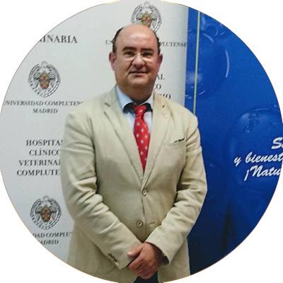 Gerardo Ibáñez Sánchez